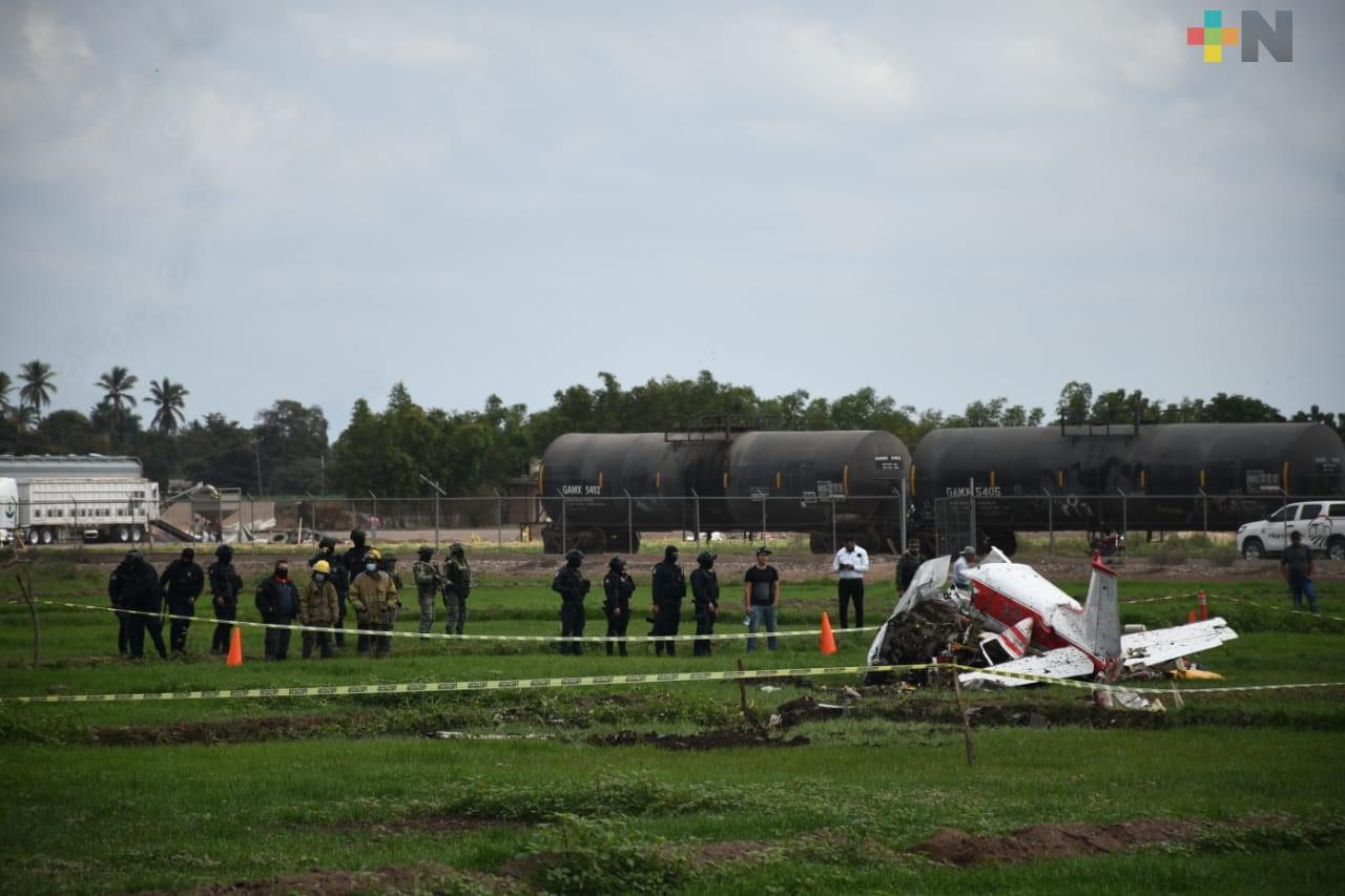 Nieto de Amado Carrillo habría muerto en accidente de avioneta