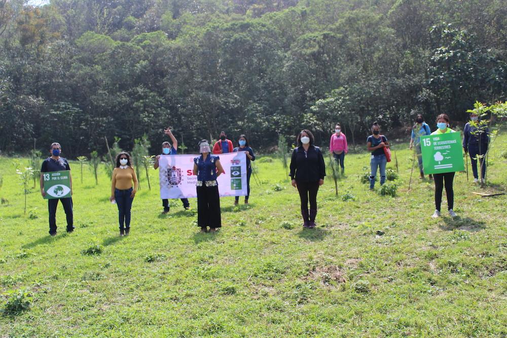 Sedema trabaja en recuperar 26 áreas naturales protegidas de Veracruz; La Martinica es una de ellas