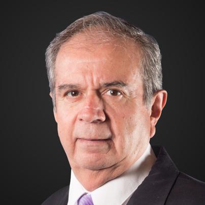 Miguel Reneaum Alcocer