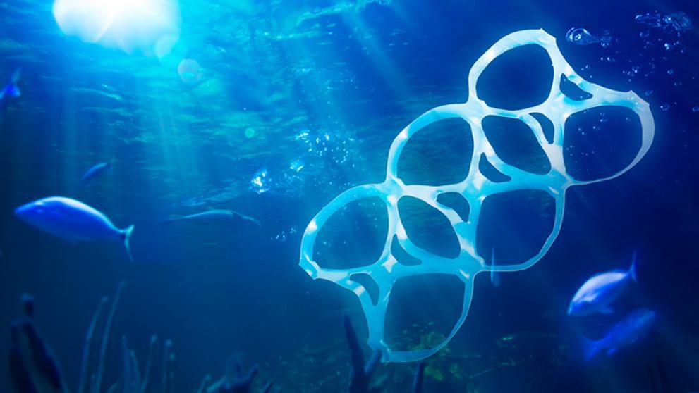 Hay más océano que tierra y está en riesgo | Qué podemos hacer para combatir la crisis ambiental