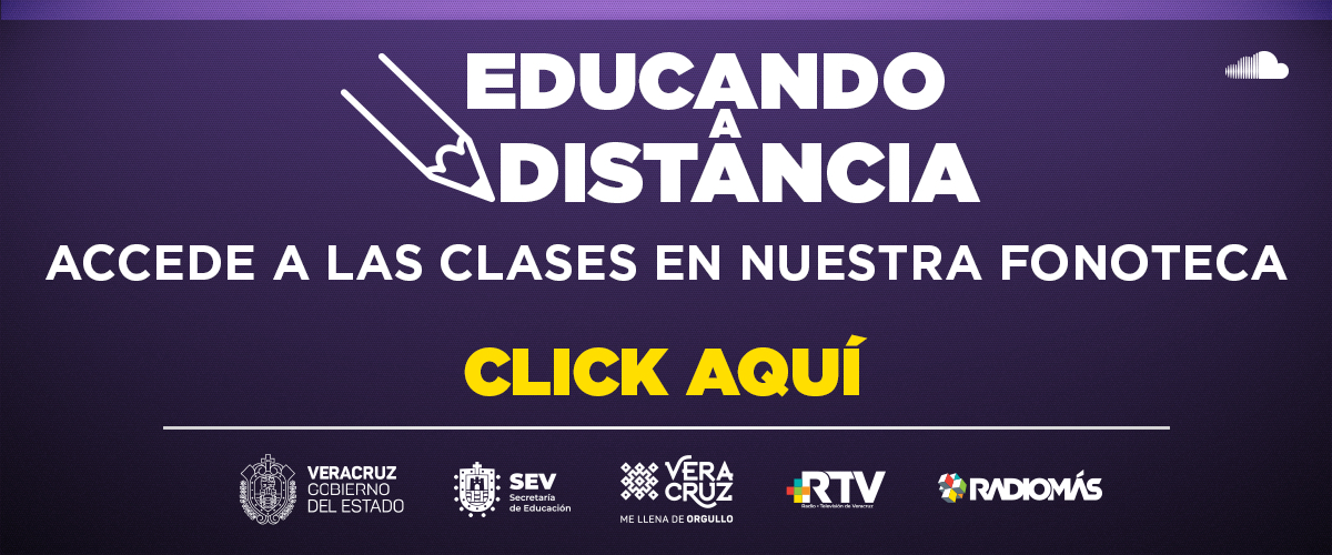 Educando a distancia