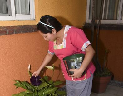 Trabajadoras del hogar afectadas por pandemias han tenido que buscar otras fuentes de ingreso