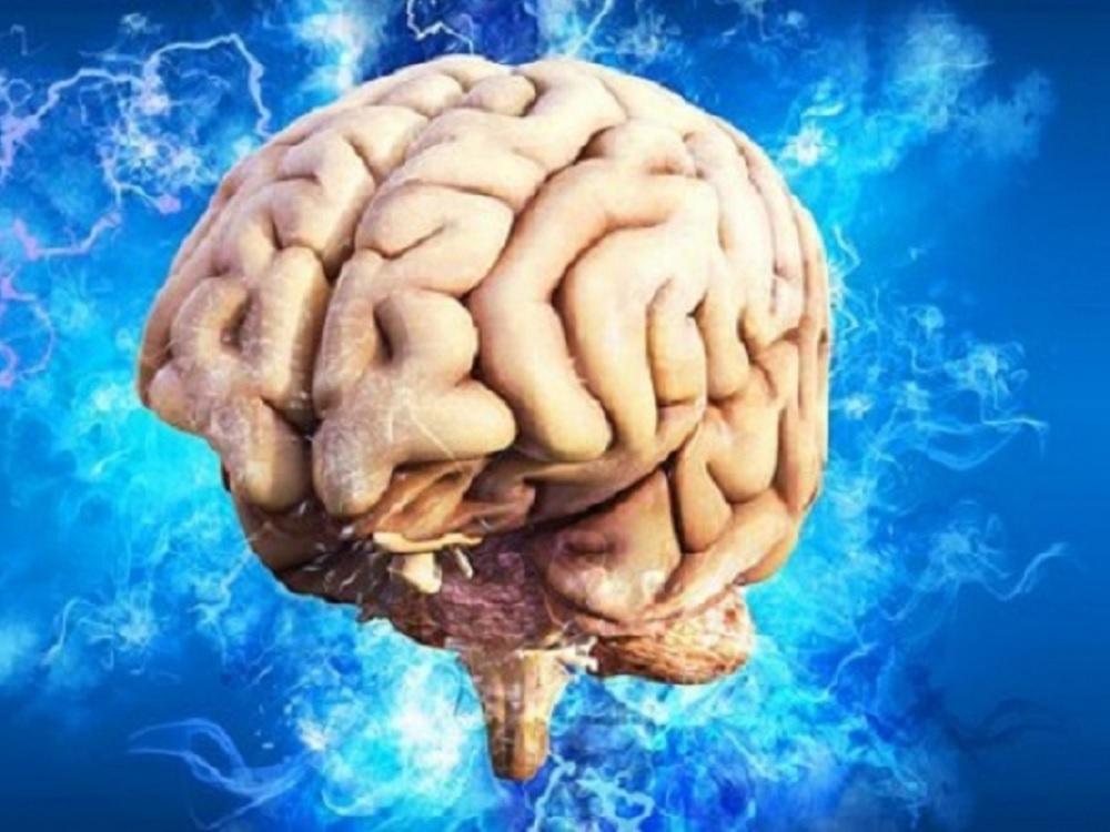 Dispositivo de silicio ayuda a comprender el estado de salud del cerebro