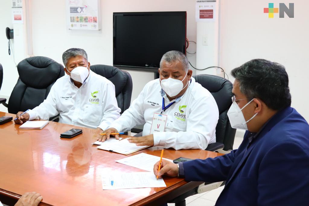 Opera SEDARPA ocho campañas fitozoosanitarias en beneficio de los Sistemas-Producto