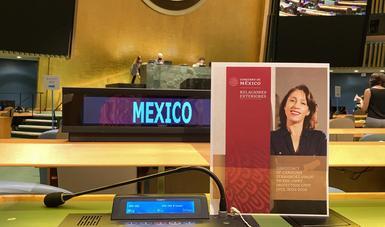 Mexicana es electa como miembro de la Dependencia Común de Inspección (DCI)