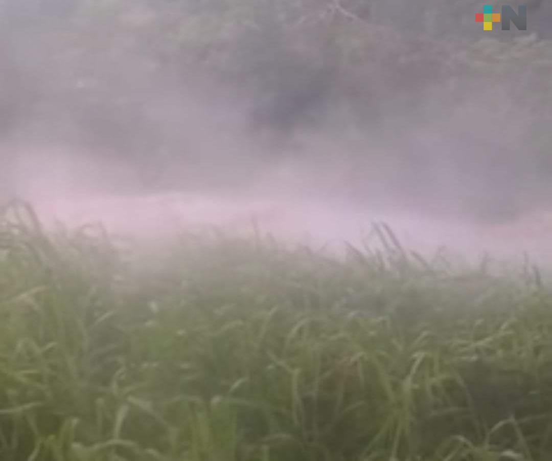Brota agua caliente de la tierra en comunidad de Moloacán, por segunda vez