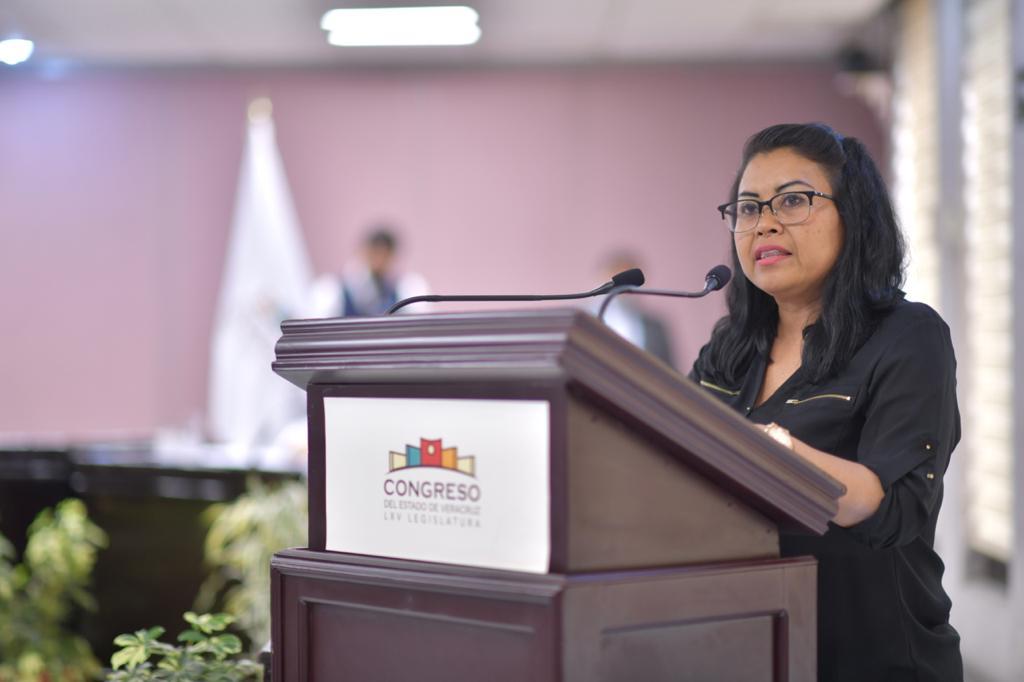 Piden al TEV y OPLE emitir medidas de protección ante casos de violencia de género