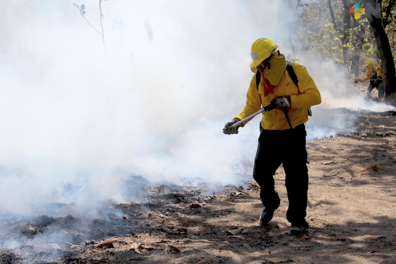 Aumentan hasta el 30% los incendios de pastizales en Xalapa