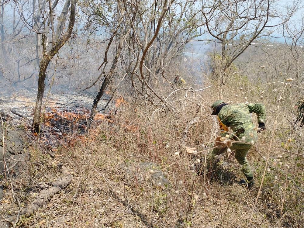 Ejército Mexicano aplicó Plan DN-III-E en sofocación de incendio en municipio de Alto Lucero