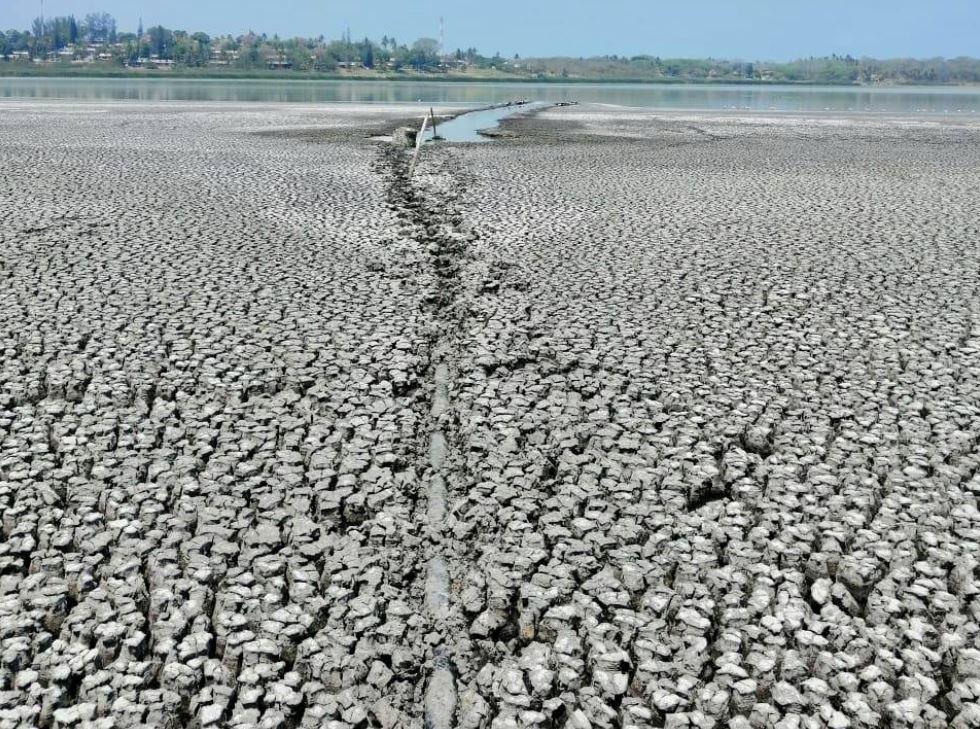 Procuraduría del Medio Ambiente ha emprendido investigación en laguna de El Farallón
