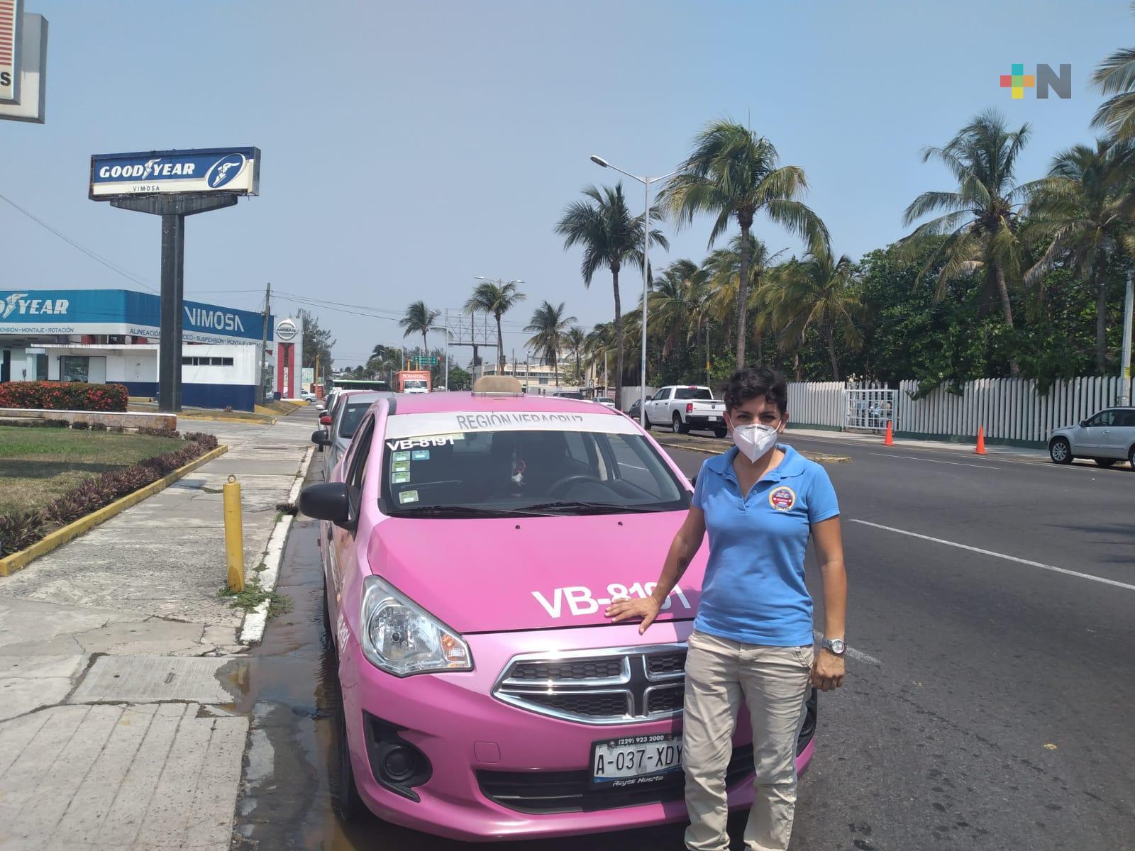 Taxi Pink Pet, una opción para transportar a las mascotas en Veracruz-Boca del Río