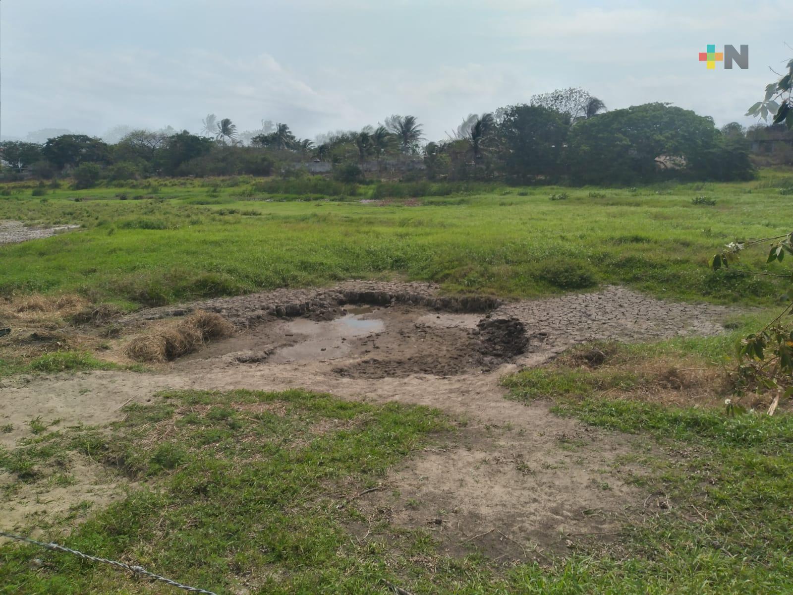 Por desaparecer laguna Tarimoya del municipio de Veracruz
