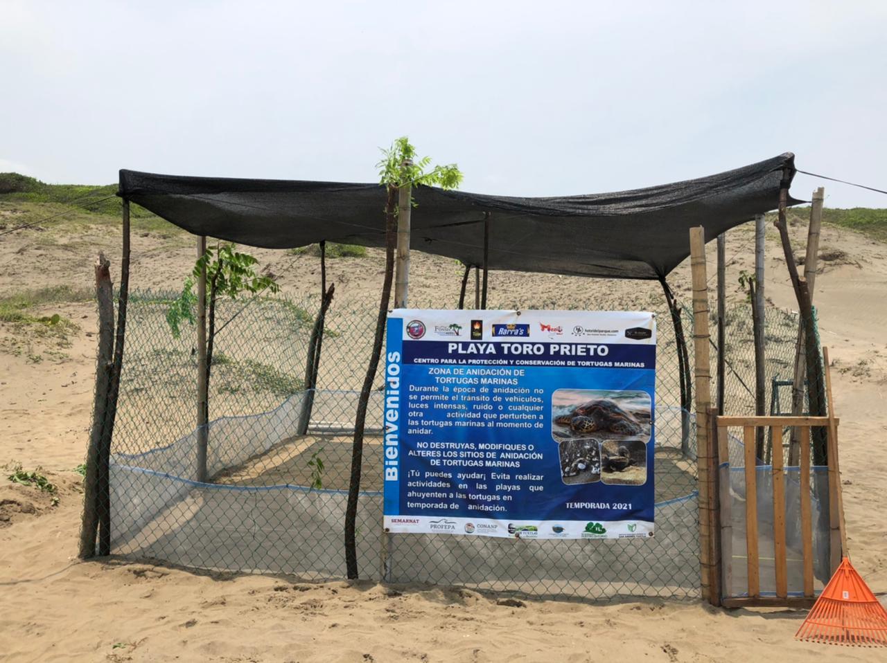 En San Andrés Tuxtla construyeron corral de anidación para tortugas