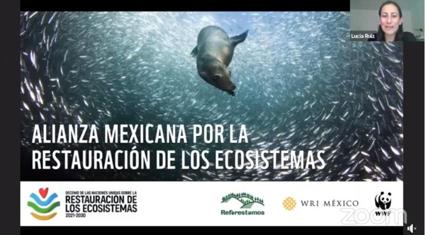 """Firman agrupaciones mundiales """"Alianza Mexicana por la Restauración de los Ecosistemas"""""""