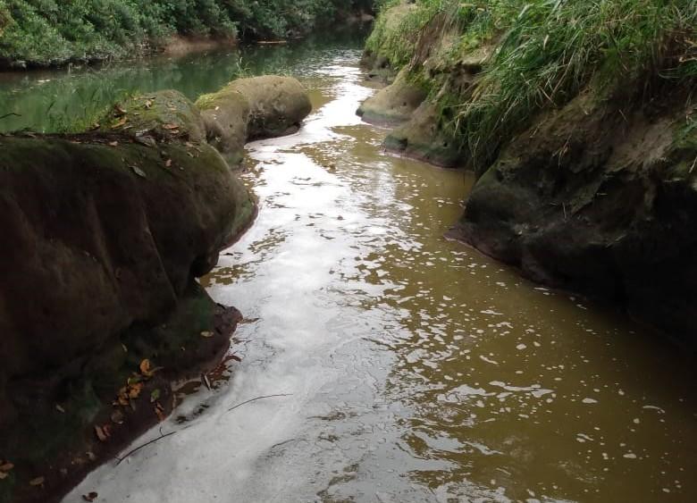 El río Bobos sufre de contaminación lo que genera mortandad de especies acuáticas