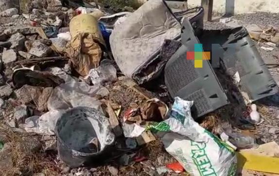Reportan basurero en calles de colonia astilleros de municipio de Veracruz