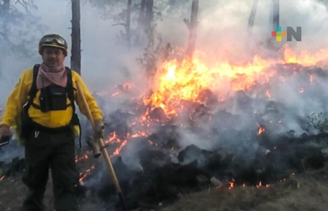 Conafor y Protección Civil combatieron incendio forestal en Huayacocotla