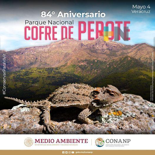 84 aniversario del Parque Nacional Cofre de Perote