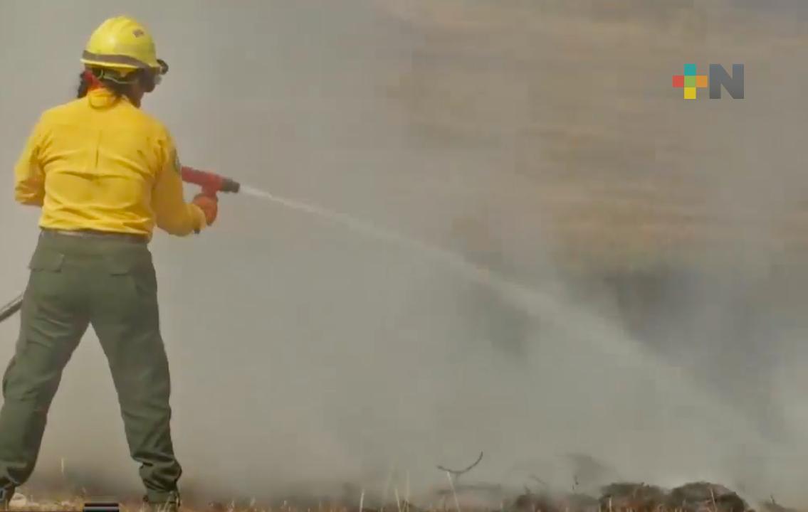Incrementan incendios de pastizales en Xalapa por la altas temperaturas