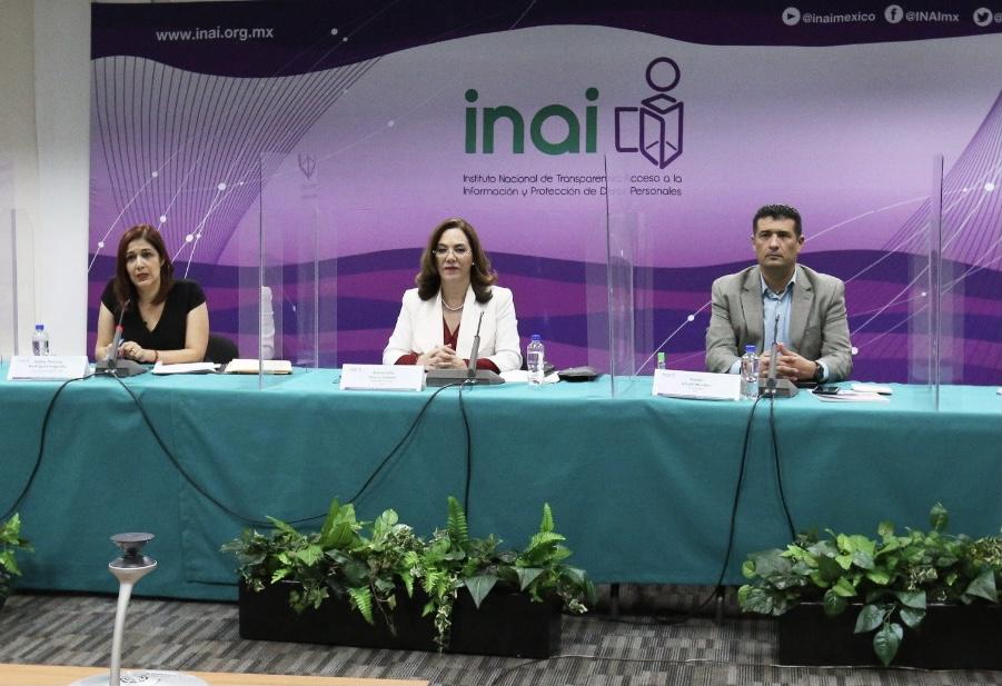 Titular del IVAI sostuvo reunión de trabajo con su homóloga del INAI