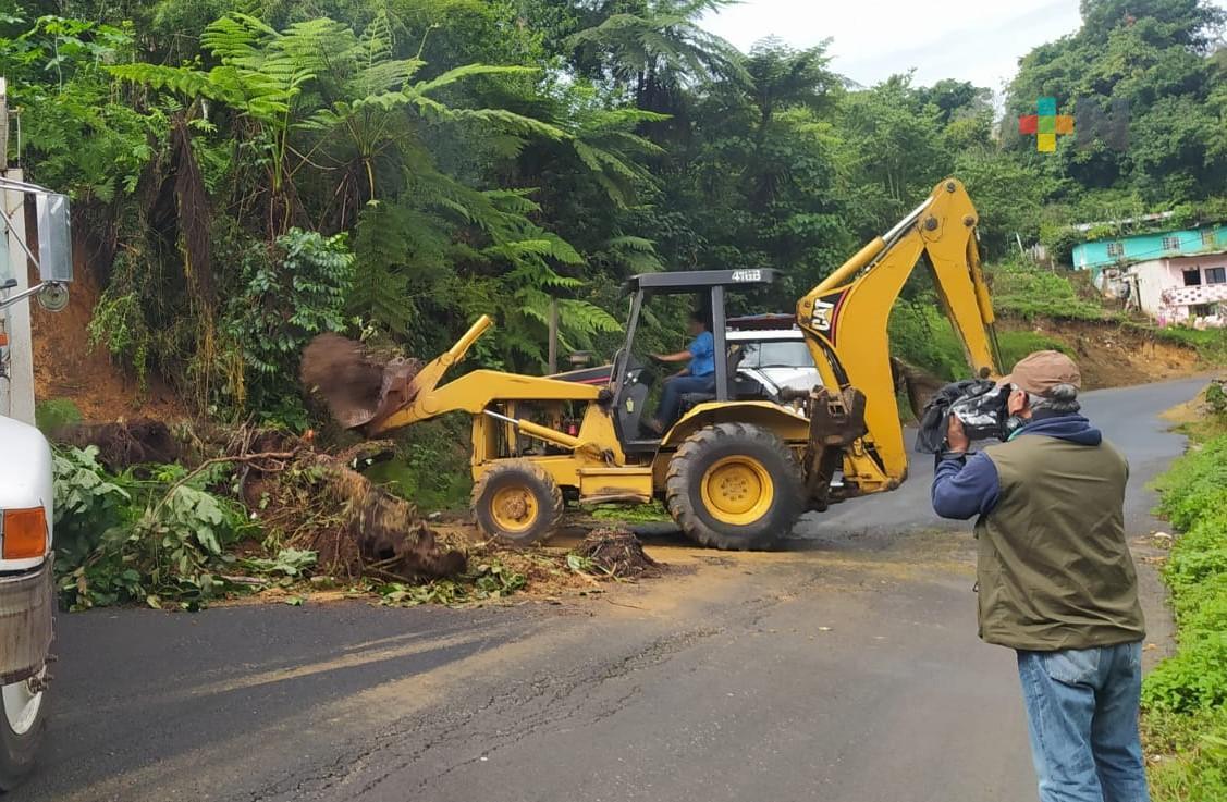 Deslaves e inundaciones en cinco colonias de Coatepec