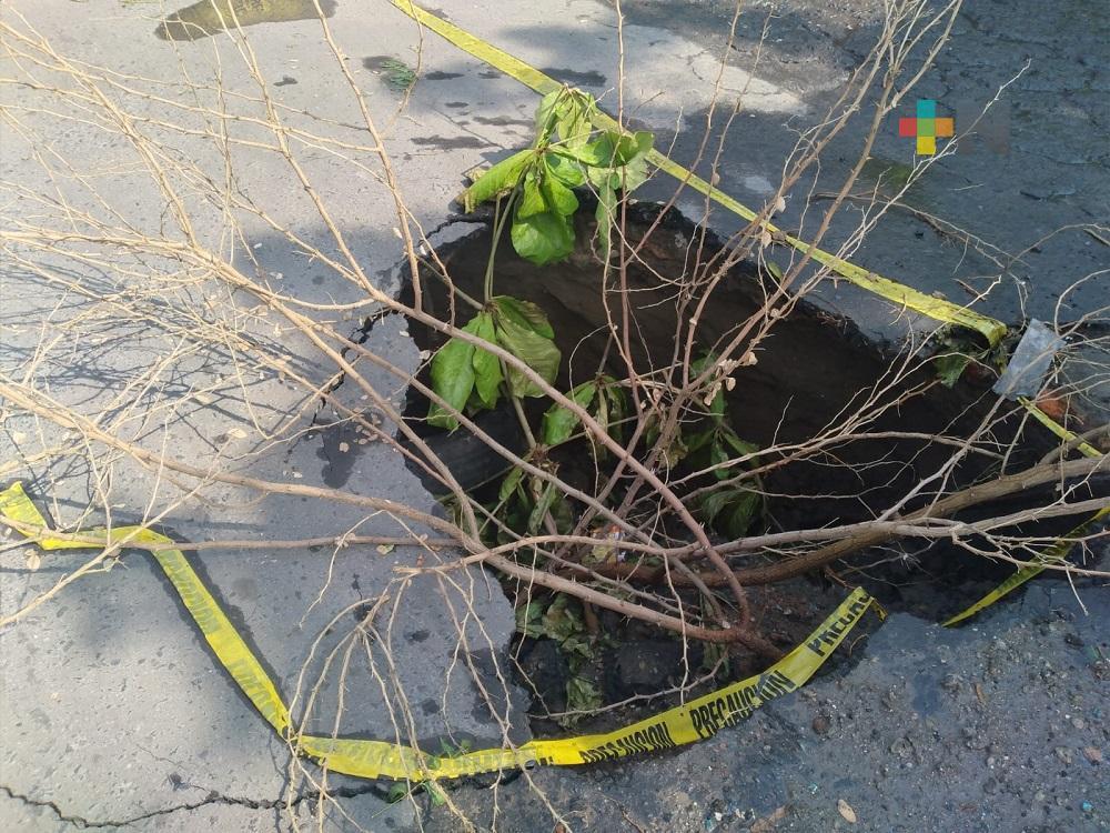 Se forma socavón en colonia  de Veracruz, vecinos colocan llantas y ramas para evitar accidentes
