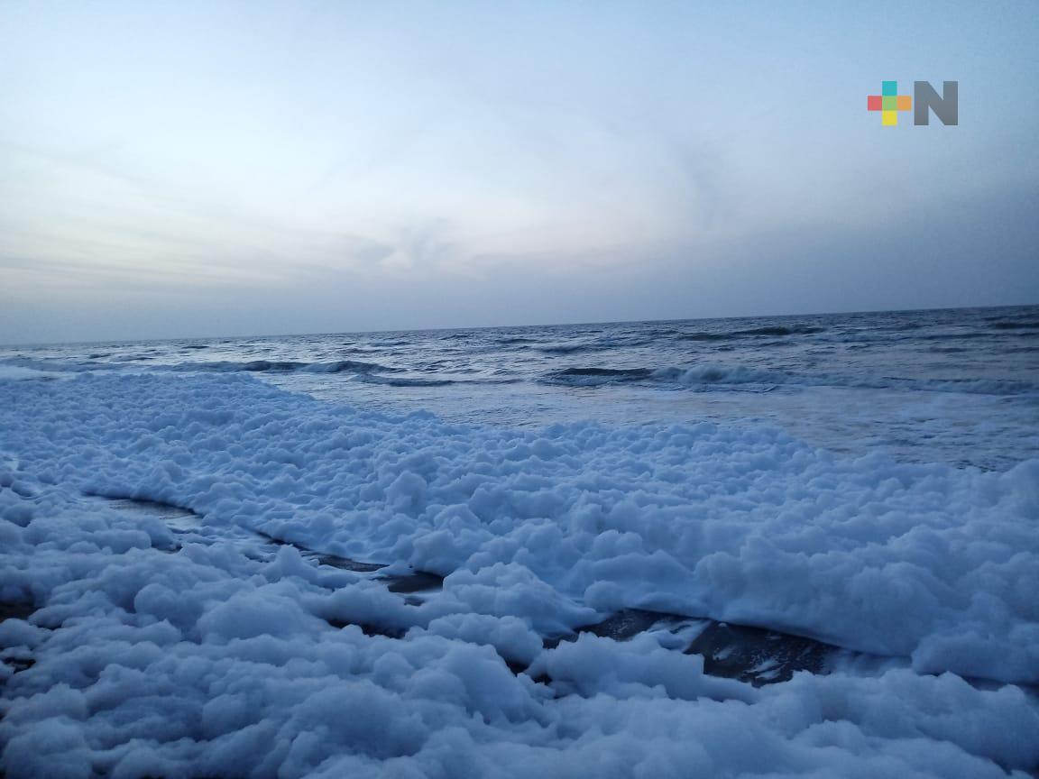 Espuma de mar sorprendió en Coatzacoalcos