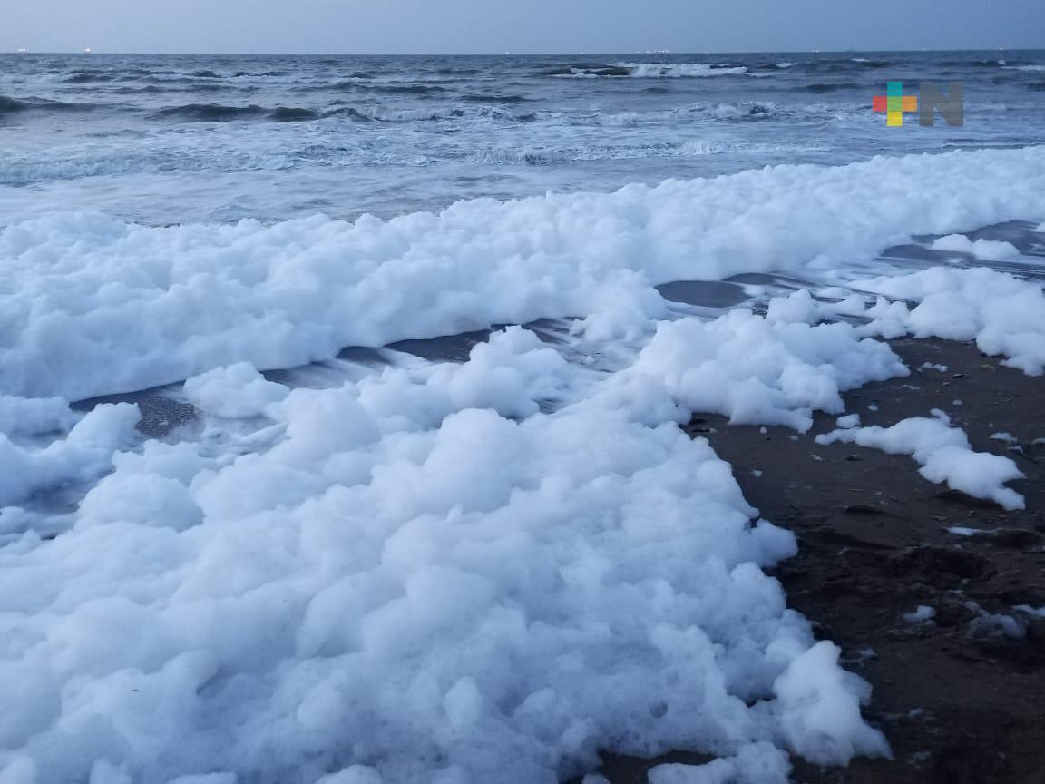 Inusual fenómeno de espuma de mar en Coatzacoalcos llamó la atención de porteños