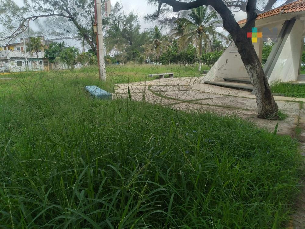 Colonos exigen mantenimiento en parque Los Pinitos del municipio de Veracruz