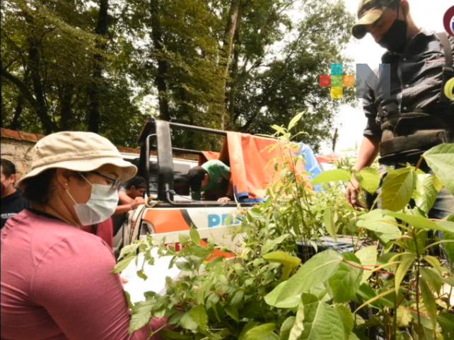 «Escuela Verde» busca involucrar a la comunidad educativa en la conservación y recuperación de bosques