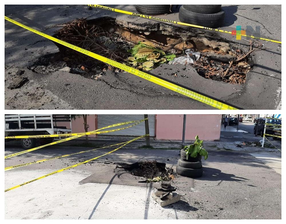 Sin reparar hundimiento en calle Abasolo de Veracruz
