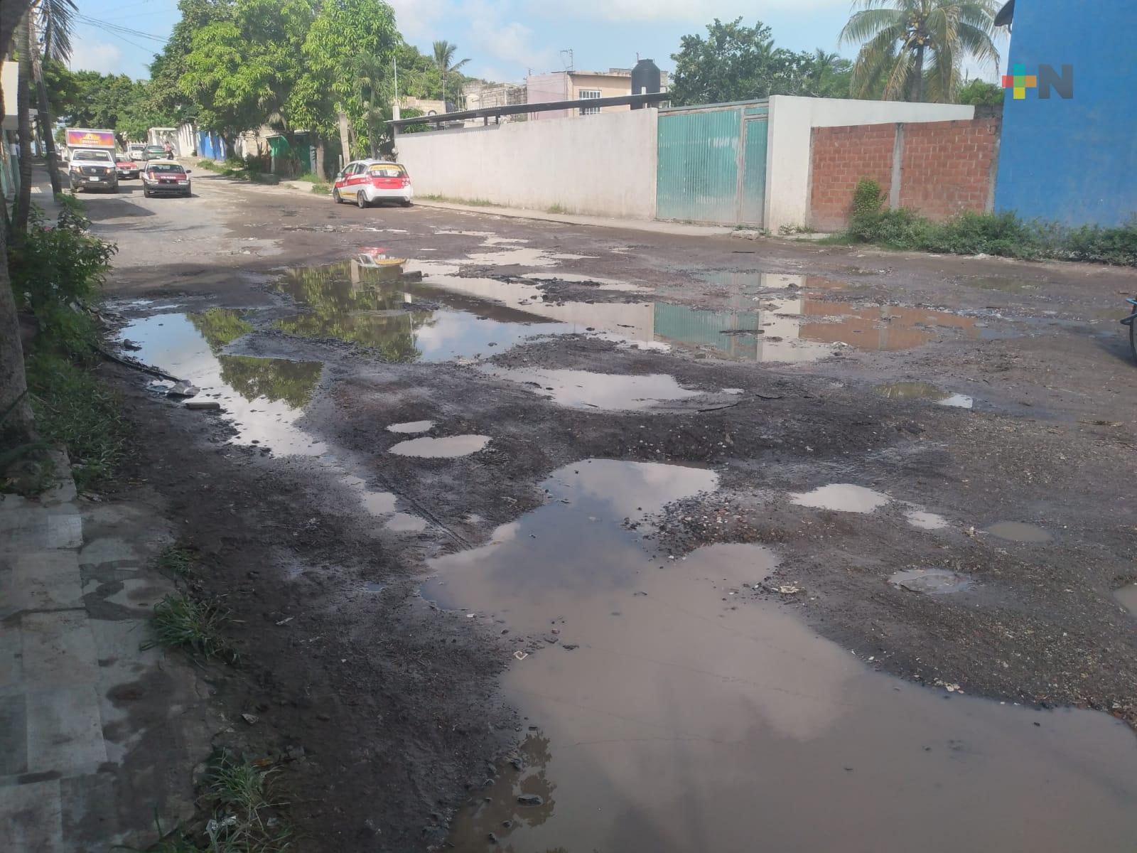 Piden atender baches en calle Leonardo Pasquel de colonia Vicente Lombardo de Veracruz