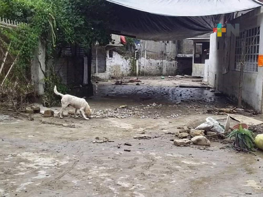 Tromba inundó domicilios y calles en Ixhuatlán de Madero