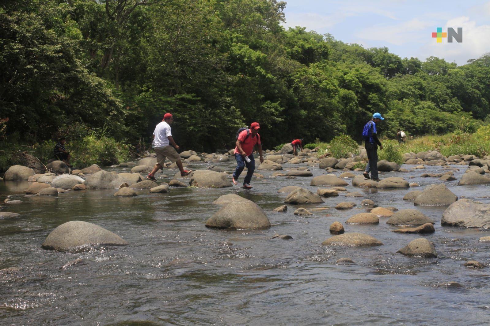 Buscan reforestar sierra de Santa Martha para tener más agua en Coatza y otros municipios