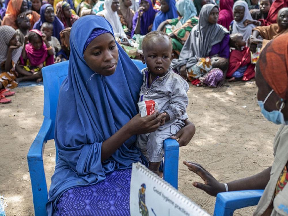 PMA necesita 55 mdd para alimentar a medio millón de nigerianos