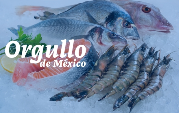 Camarón, langosta y pulpo, tres productos del mar de México